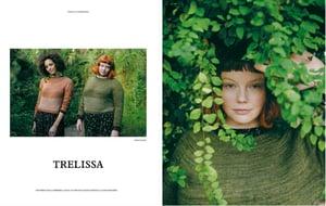 Image of  Laine Magazine Issue 11