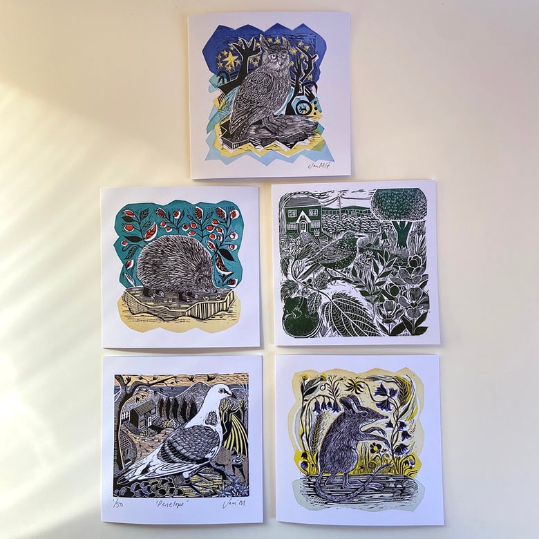 Image of OFFER - Set of all 5 square greetings cards