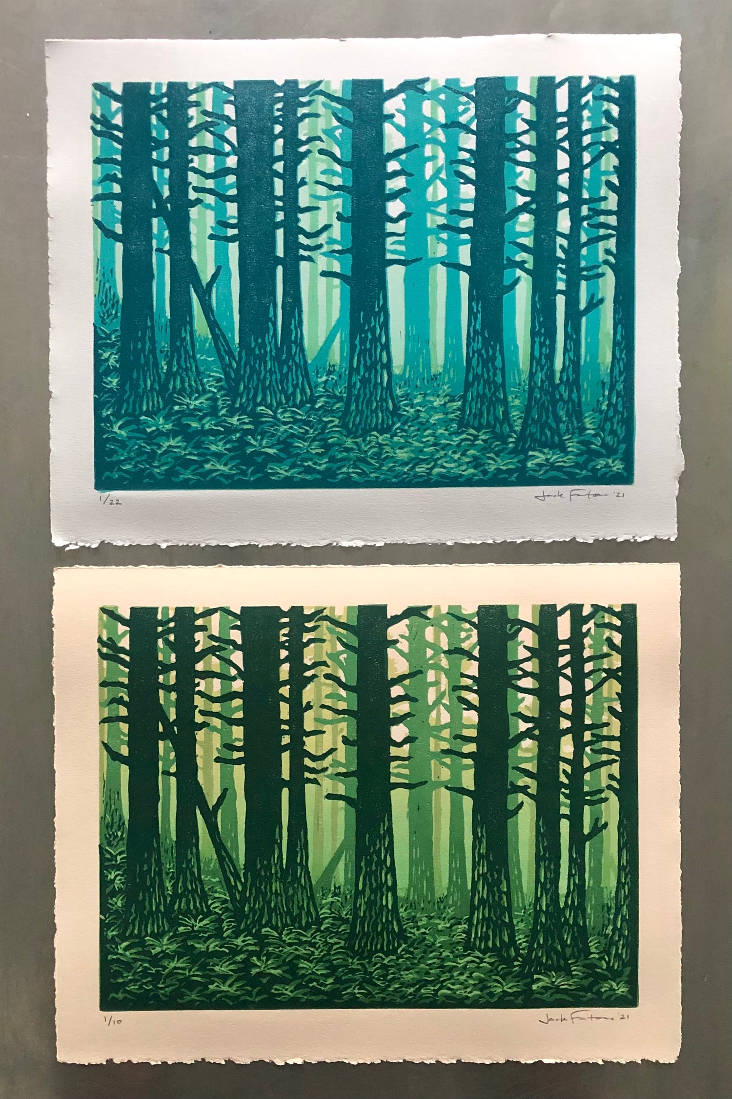 """Image of """"For the Trees"""" prints"""