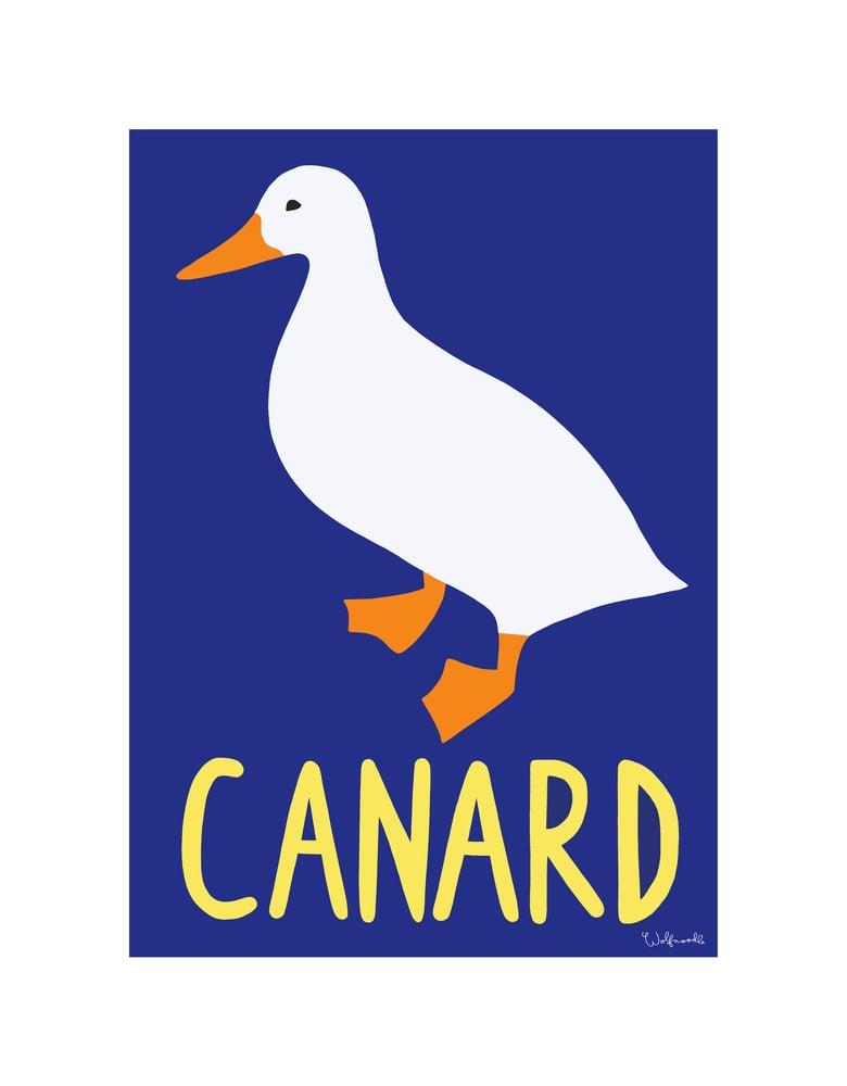 Image of Canard