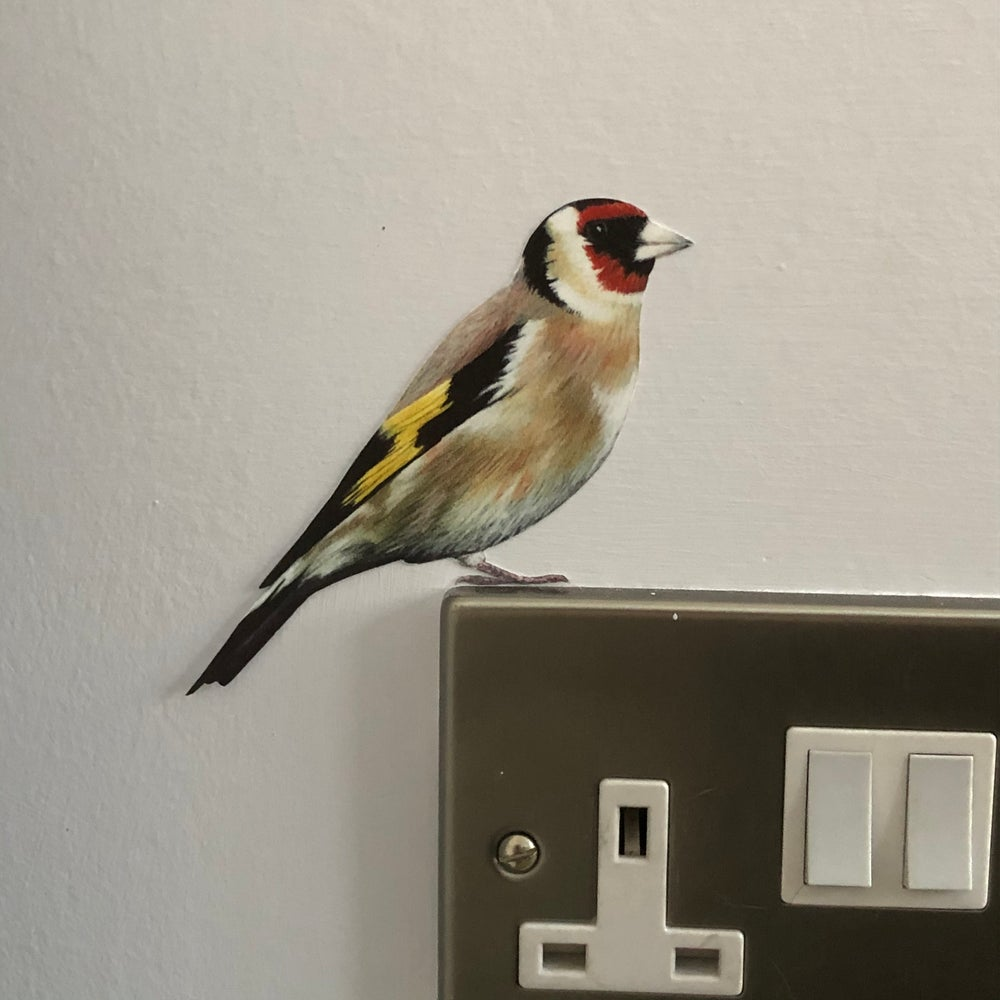 Image of NEW! Gertie Goldfinch ~ Wall sticker