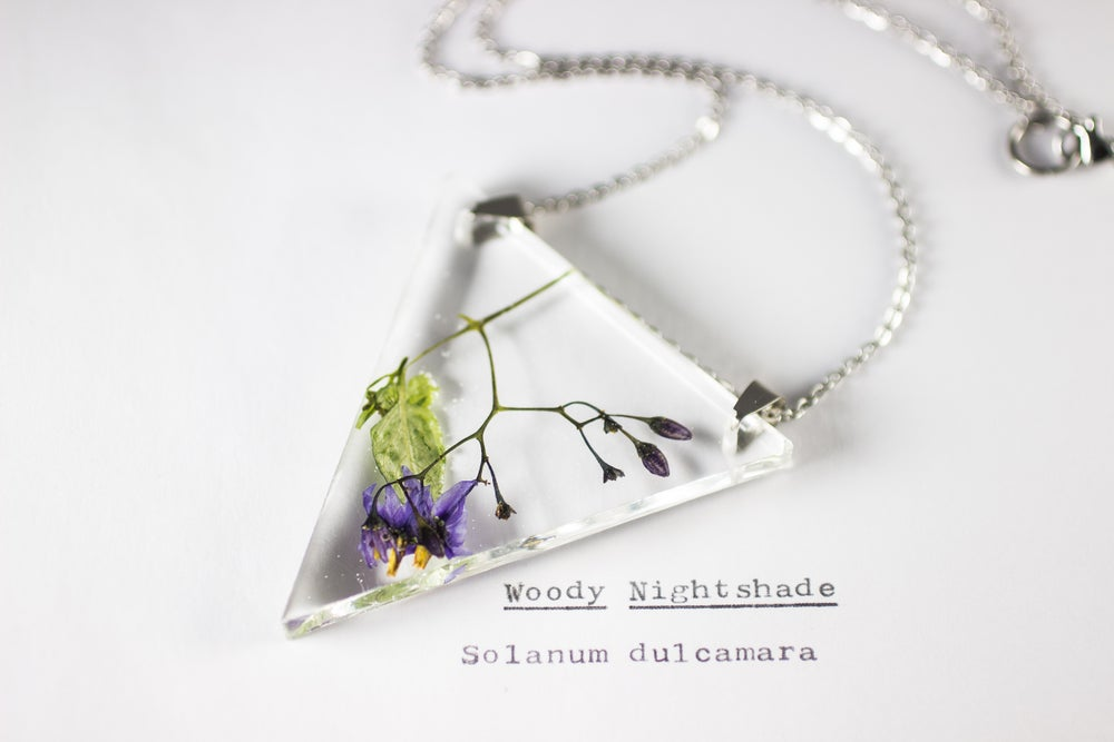 Image of Woody Nightshade (Solanum dulcamara) - Triangular Pressed Pendant #2