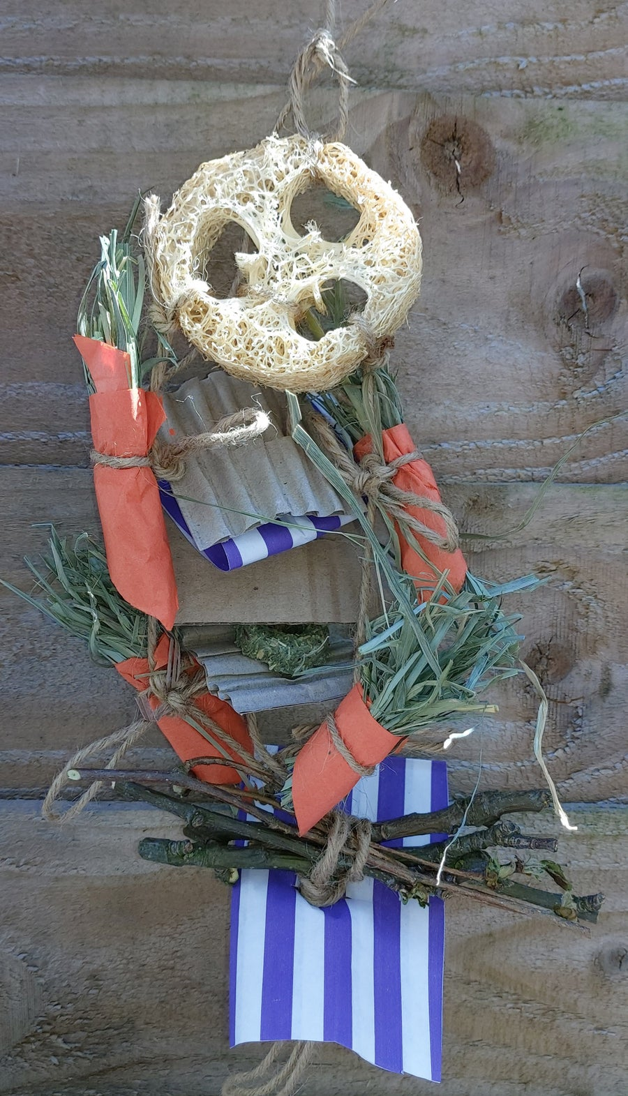 Image of Dried Delights Dream Catcher