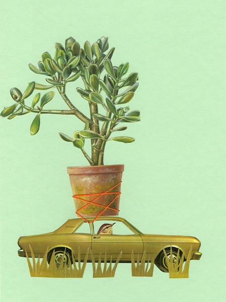 Image of May had a passion for plants. Limited edition collage print.