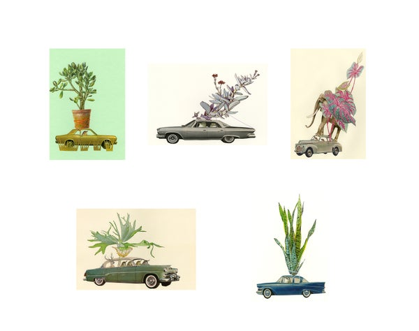 Image of Plant Lovers. Note cards.