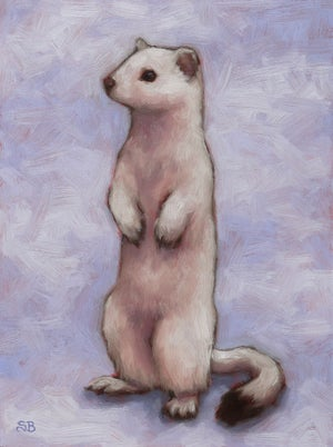 """Image of Study for """"Winter Ermine"""" Original Oil Painting"""
