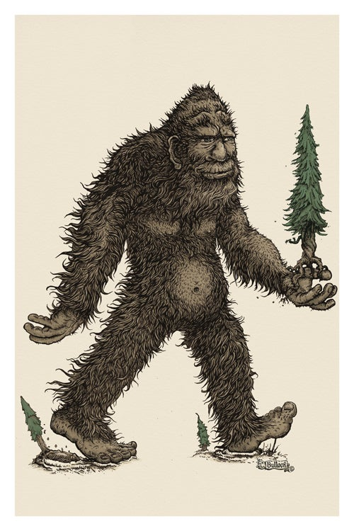 The Sasquatch - Protector of the Forest