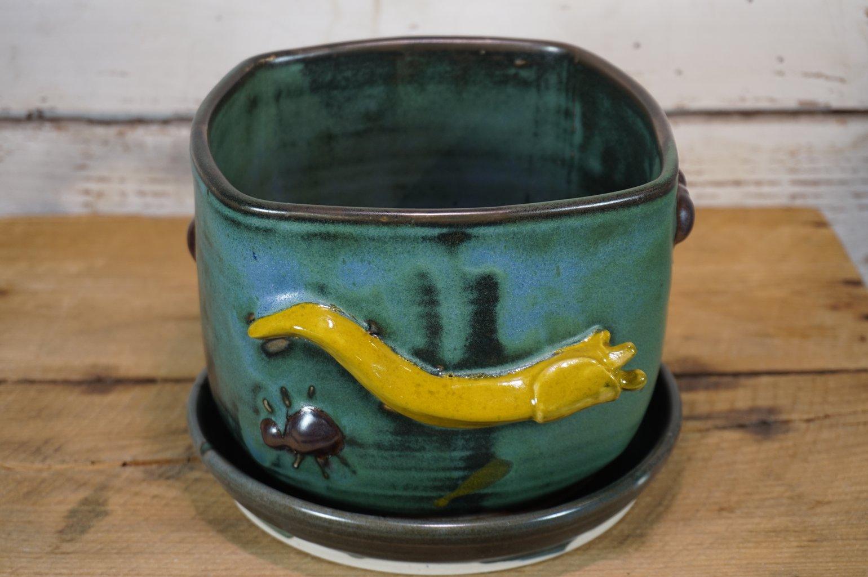Image of Squarish Sluggy-Buggy Plant Pot