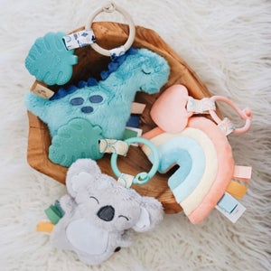 Image of MACY RAINBOW Itzy Pal Teether Toy