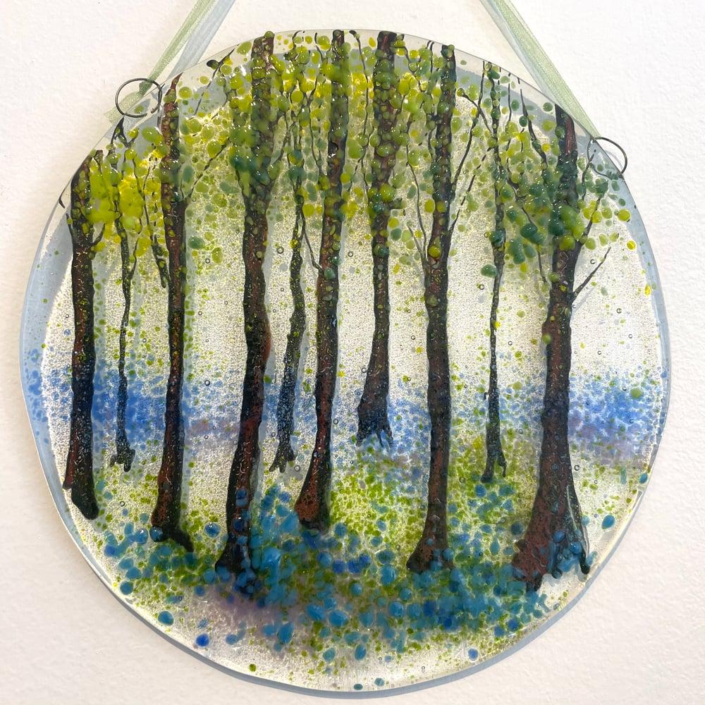 Image of Woodland Seasons