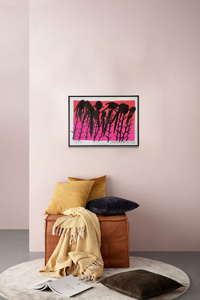 Image of Black Roses