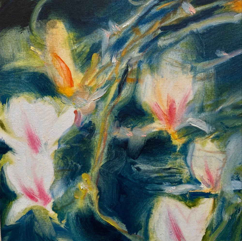 Image of Magnolia (Night Study 1)