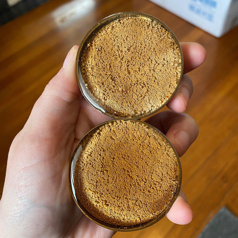 "Image of 2"" Coffee Inky Plugs"
