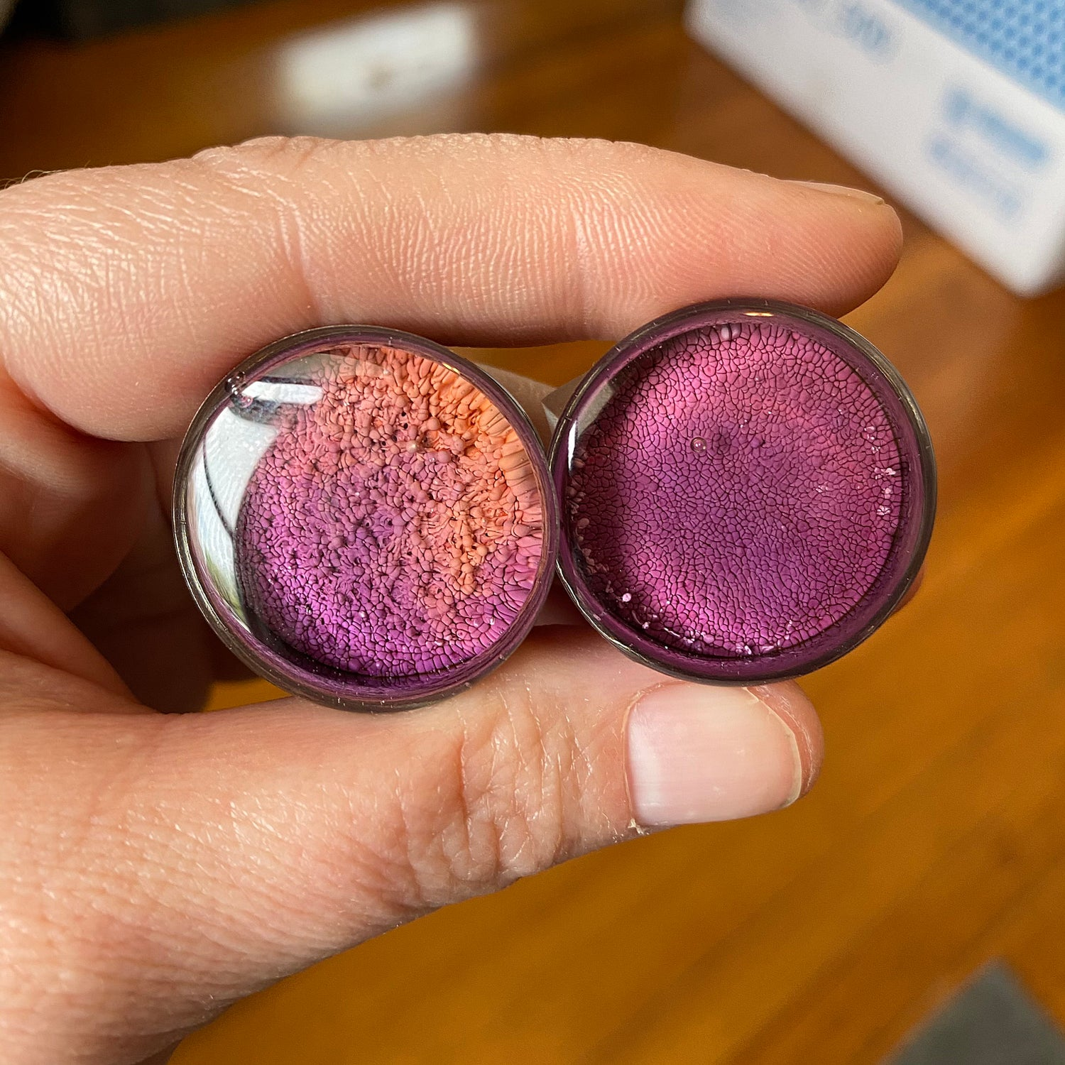 "Image of 1"" Purple/Peach Inky Plugs"
