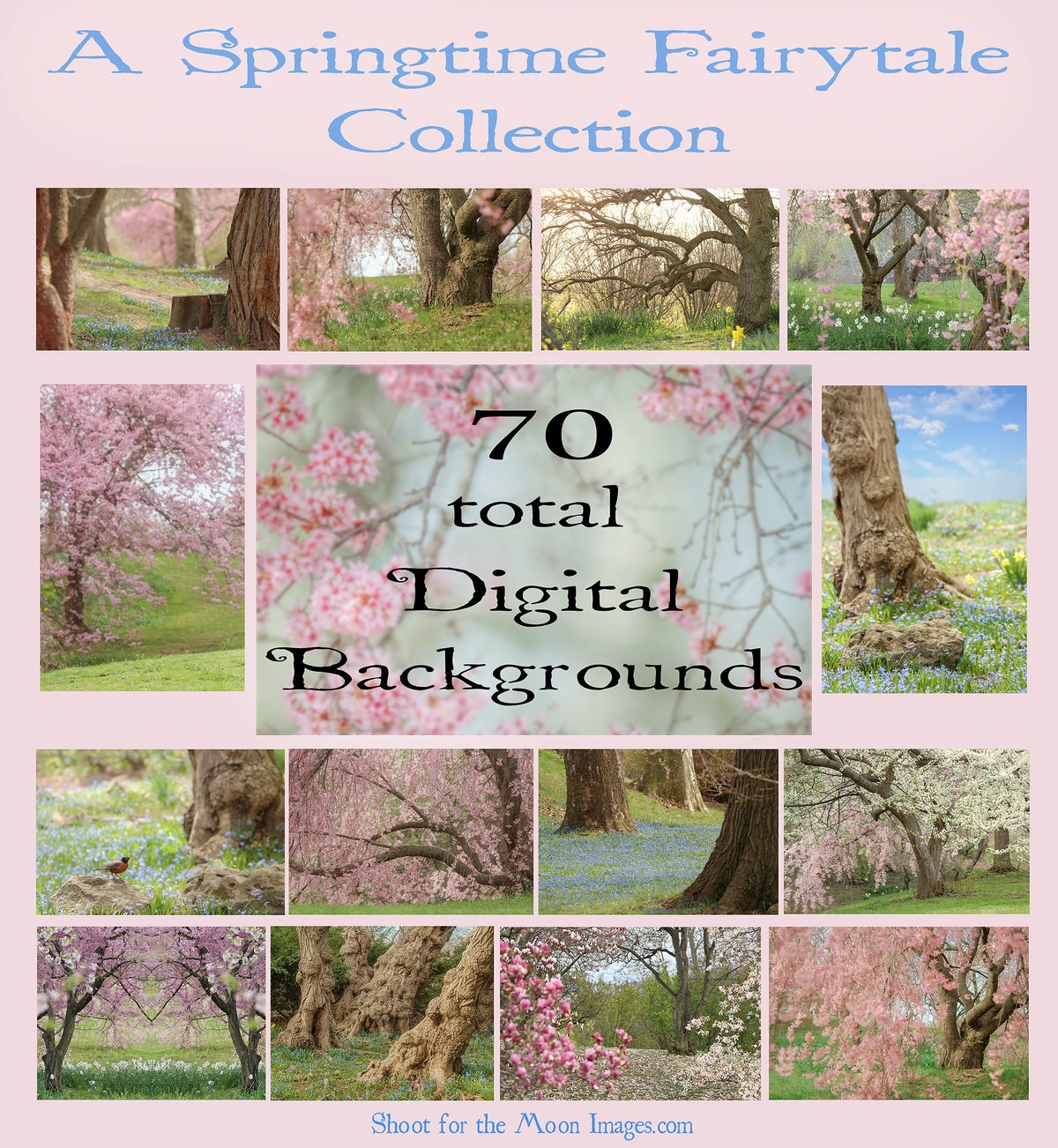 Image of A Springtime Fairytale Digital Background Collection