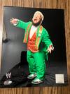 WWE Photofile Screaming