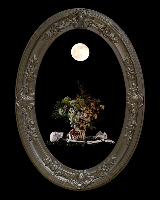 Image of 'Egredior' in Victorian Bubble Glass Frame