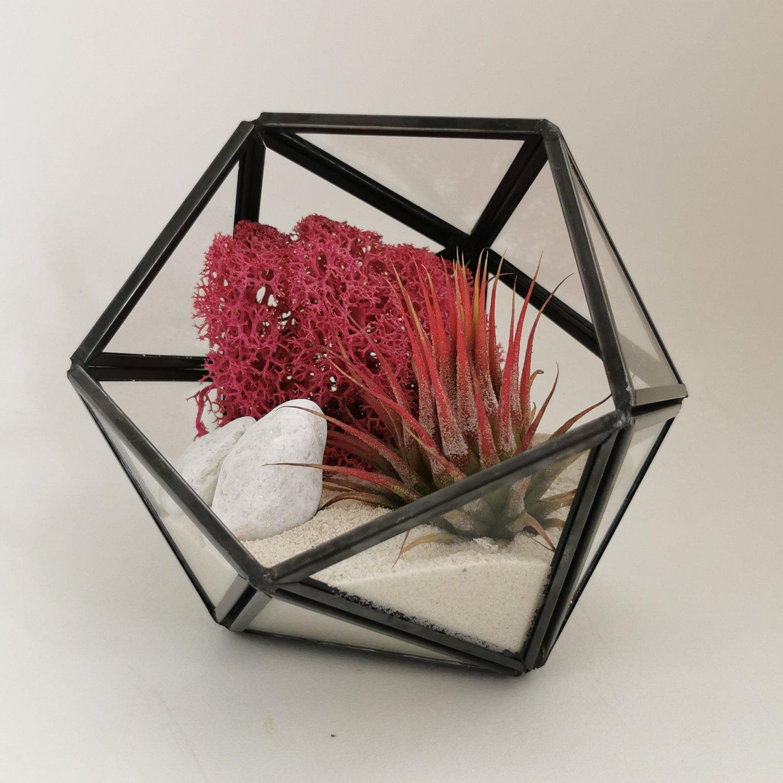 Image of Red diamond