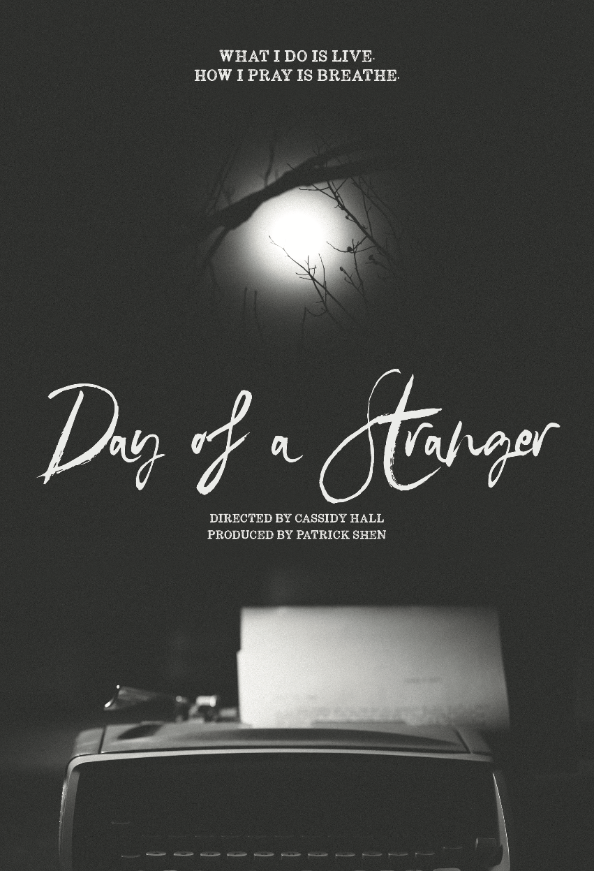Day of a Stranger 13x19 poster