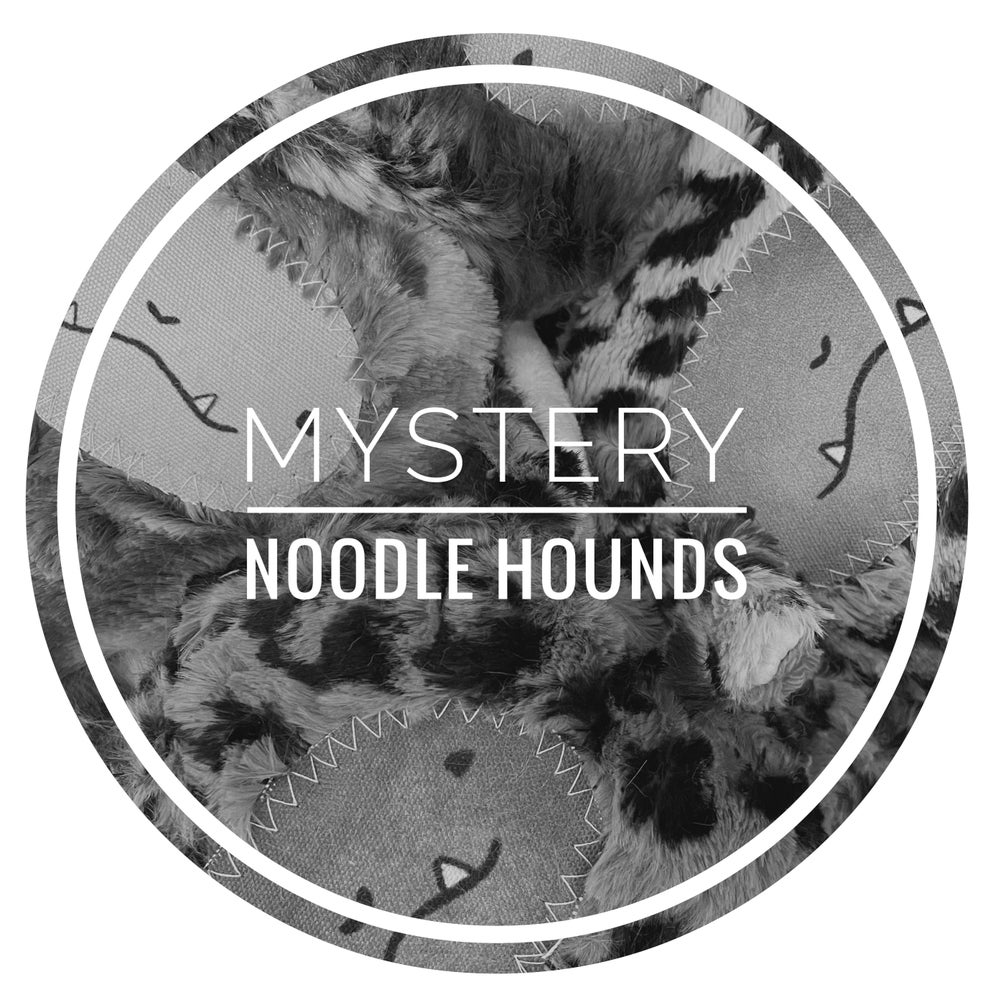 Image of BJM GO Mystery Hound Noodles