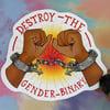 Destroy The Gender Binary Sticker