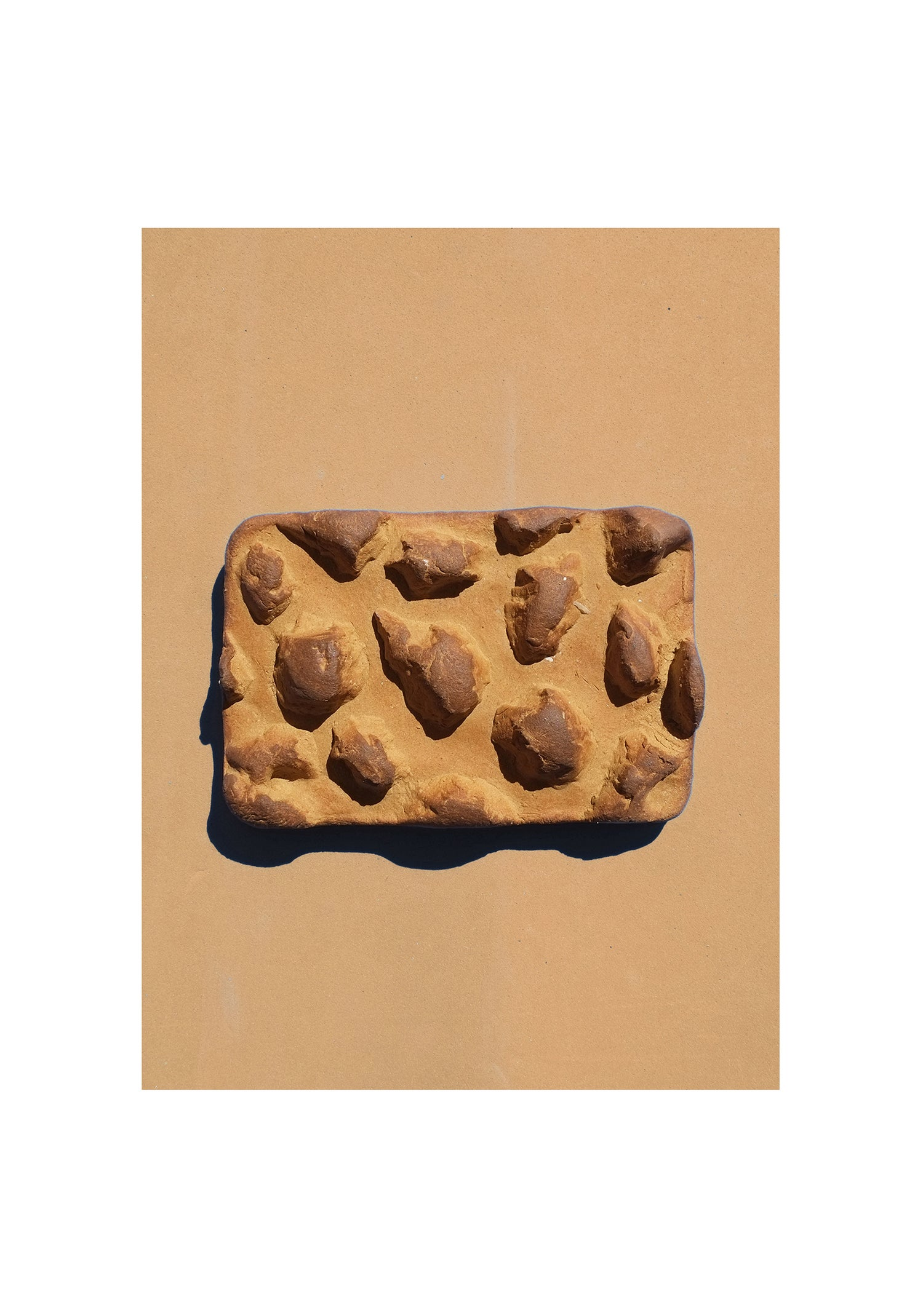 Image of SOAP DISH not on earth // col. burned cookie