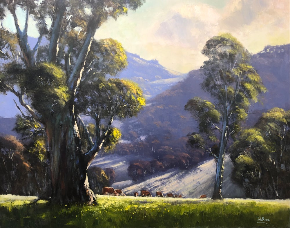 Image of Morning In The Hills, Tumut