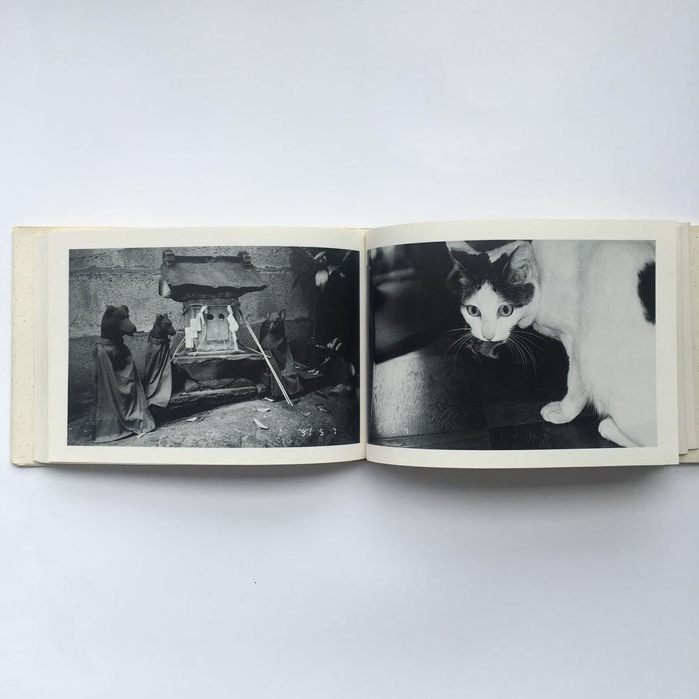 A madman's diary (Shakyo Jin Nikki) - Nobuyoshi Araki