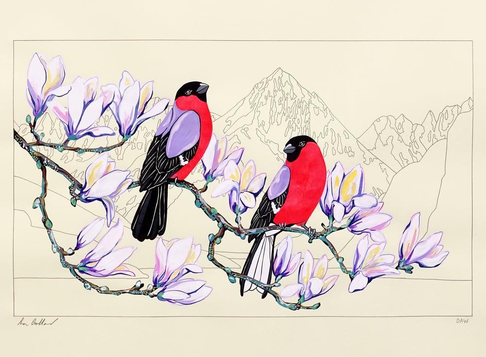 Image of Bullfinches and Atalanta