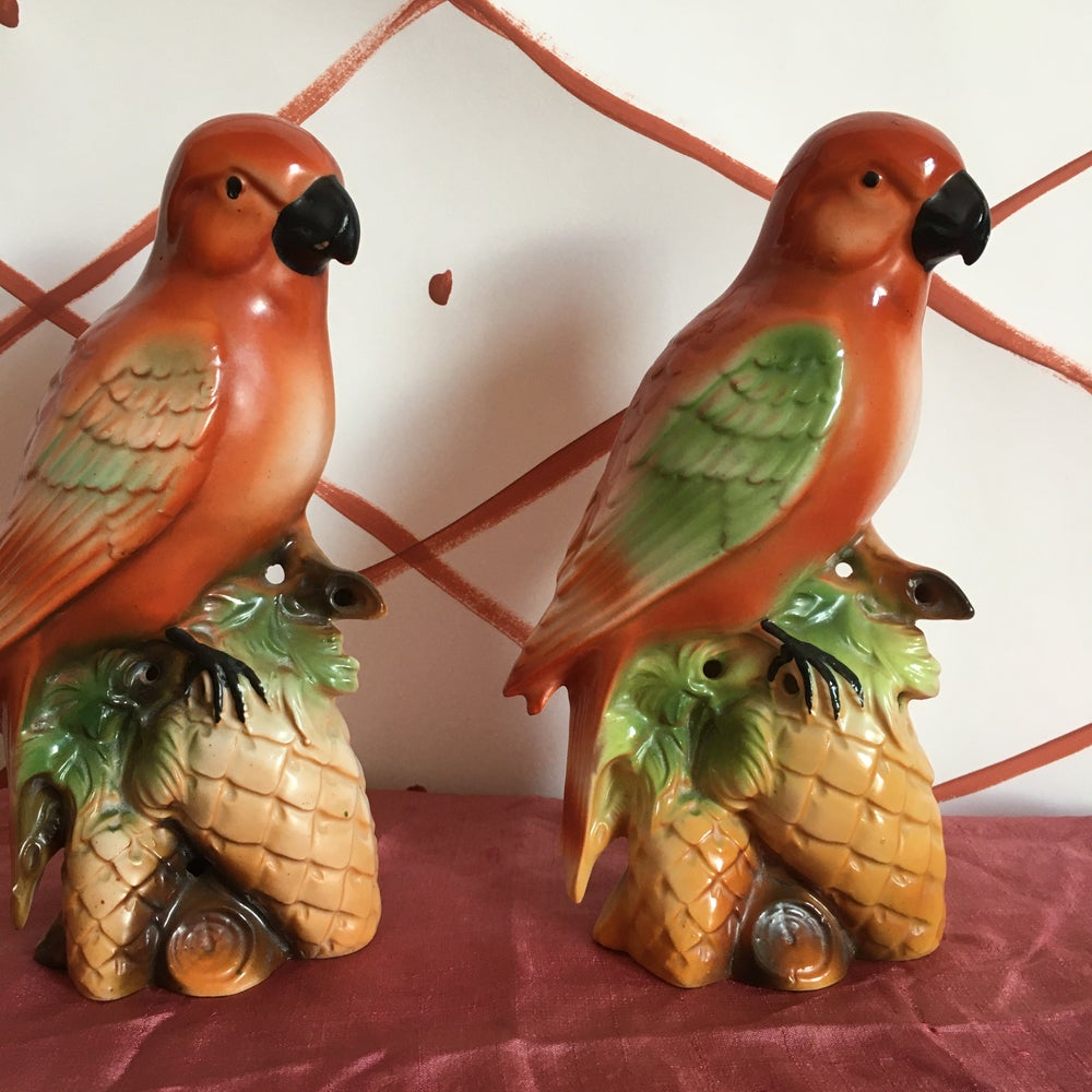 Image of Ornamental Parrot (sold separately)