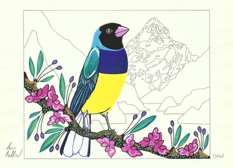 Image of Gouldian Finch and Phaedra