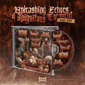 Image of UNLEASHING ECHOES OF INIQUITUOUS TORMENT :SPLIT CD