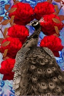 Image 1 of Peacock and Roses
