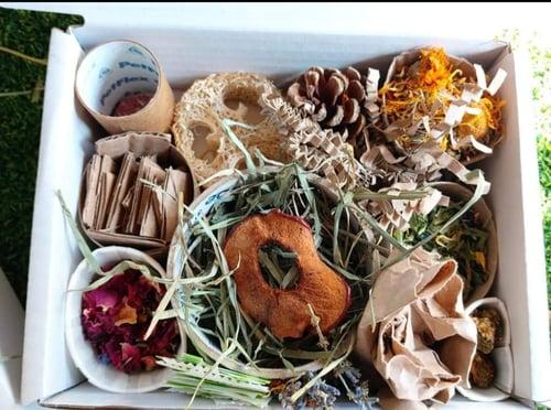 Image of Enrichment forage box