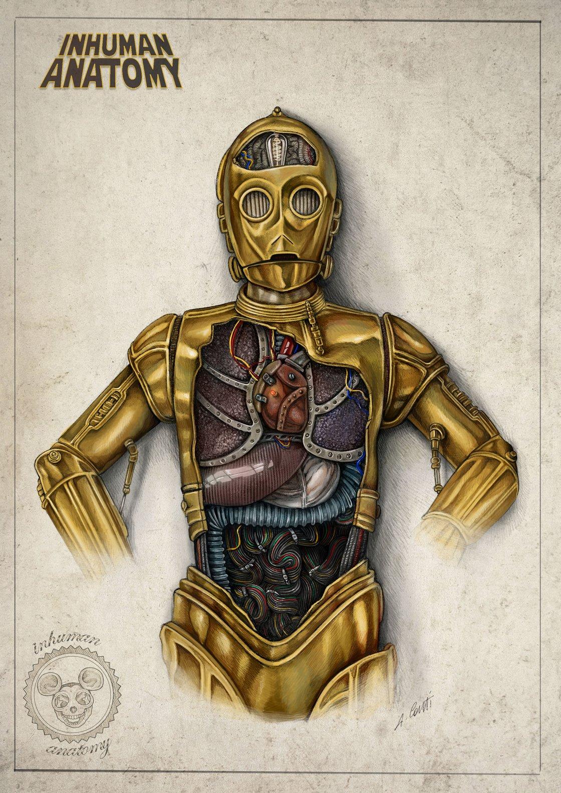 Image of INHUMAN ANATOMY- C-3PO - limited edition of 40 Giclèe print on fine art canvas