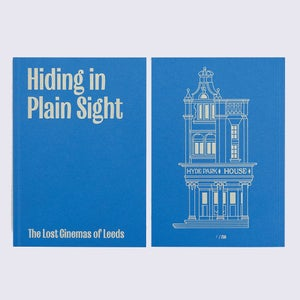 Image of Hiding in Plain Sight - Book