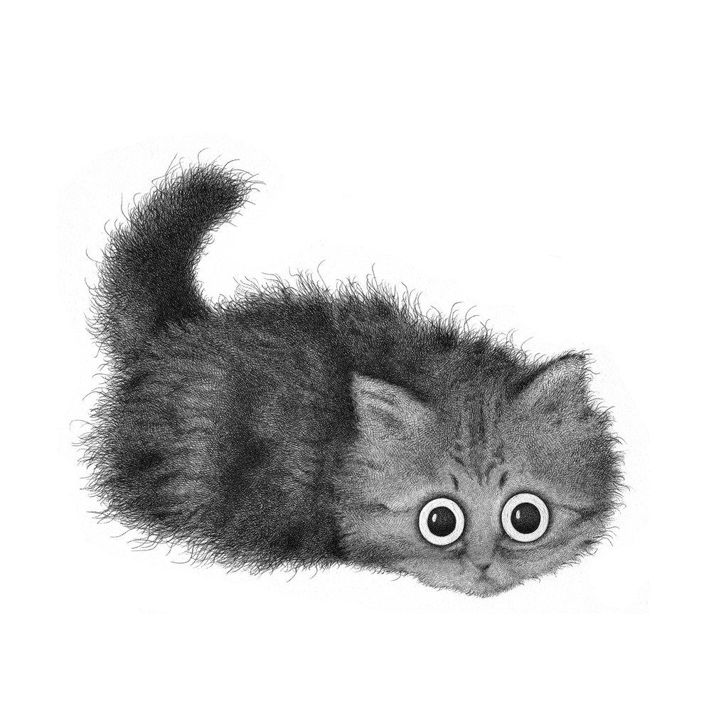 Image of Monsieur Kitterbunkles original drawing