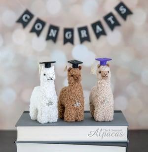 Alpaca Graduate Mini Llama - Graduation Gift- Real Fiber - Commencement Decor