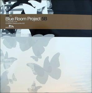"Image of Blue Room Project - 5B 12"" Vinyl"