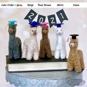 Little Llama Alpaca Graduate - Unique Grad Gift - Real Fiber - Includes Cap or 2021 Charm - Keepsake