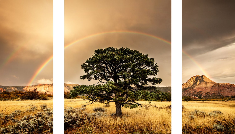 Image of Silent Rainbow 3 piece