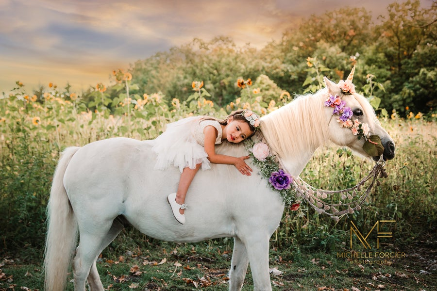 Image of Springtime Unicorn Mini-Sessions 2021 - May 15th