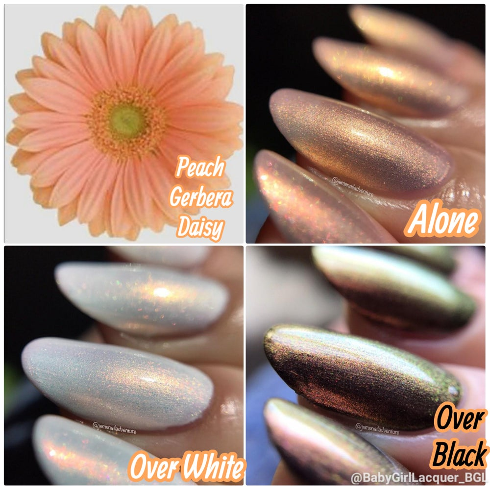 Image of Aurora Pastel Garden Collex