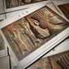 """Tir """"Persepolis"""" Digipack CD"""