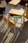 School Miniature