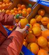 Greengrocers Fruit Rings
