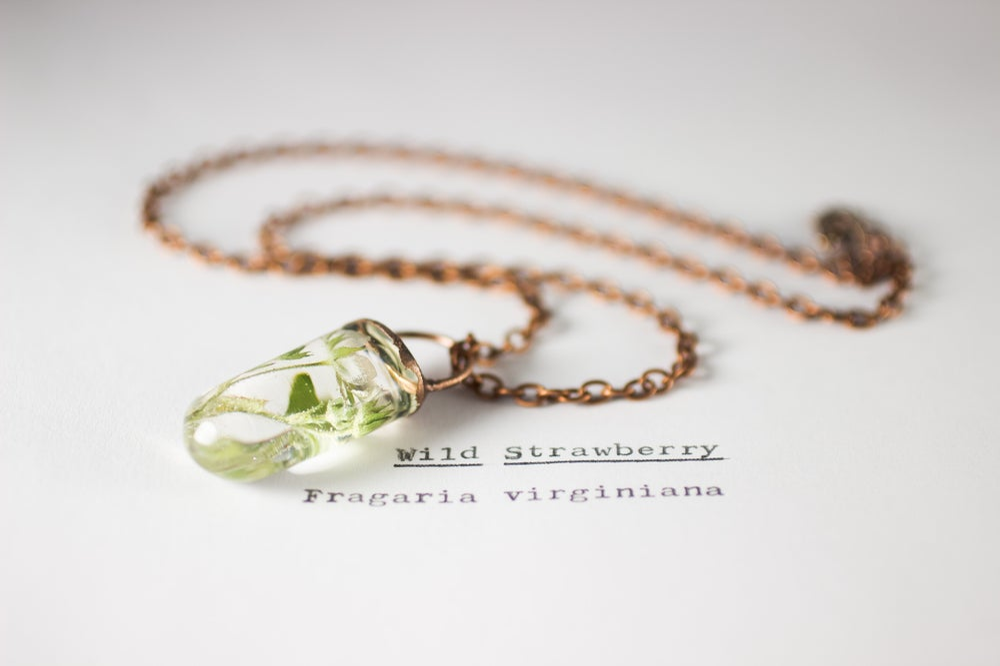 Image of Wild Strawberry (Fragaria virginiana) - Small Electroform Copper #1