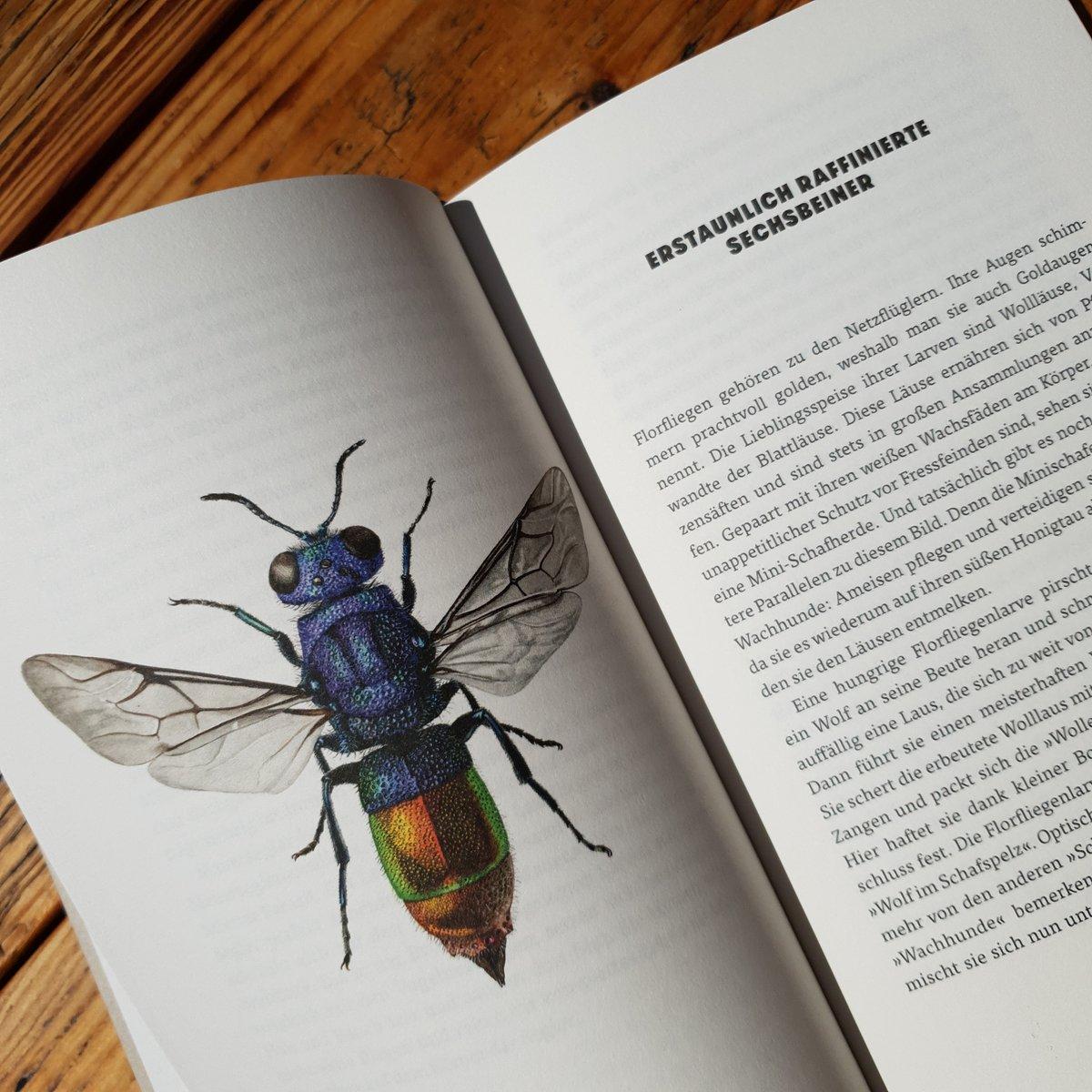 """Mikroorgasmen überall"" Buch - by Dominik Eulberg"