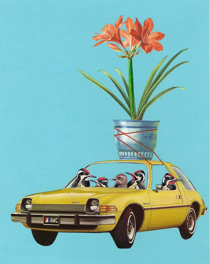Image of Sarsaparilla swilling sapsuckers on a Sunday drive. Limited edition print.