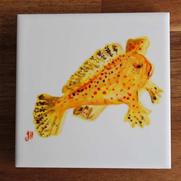 Image of Spotted Handfish Coaster